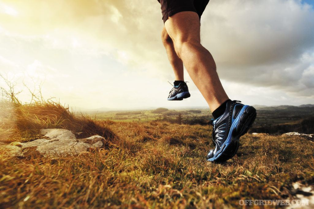 Full Speed Ahead: Power Training Workouts for Survival